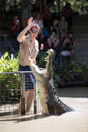 Crocodile Show Hartleys Creek