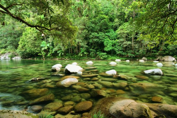 Active Tropics Explorer Mossman Gorge