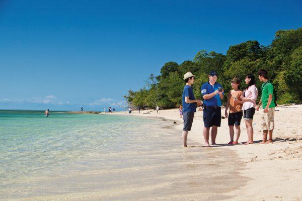 Study Cairns Fitzroy Island