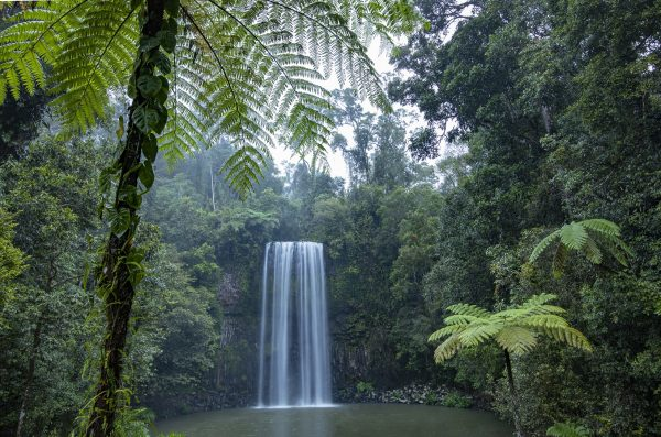 Milla Milla Falls PhlipVids Atherton Tablelands Photography