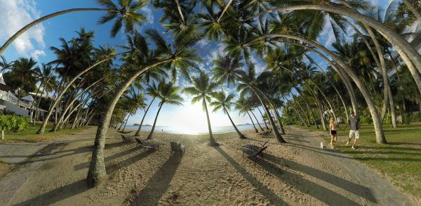 Palm Cove Cairns PhlipVids 360 VR photography